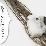 ヘアカラーは薄毛の原因?