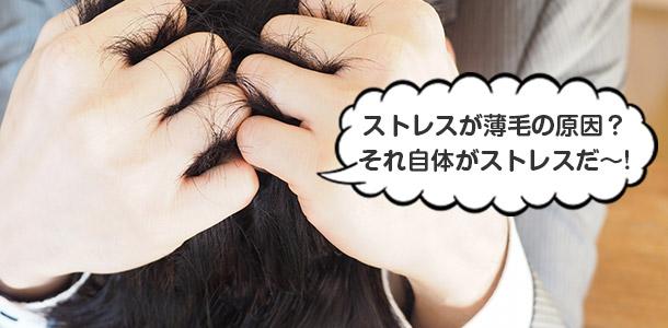 ストレスが薄毛の原因?それ自体がストレスだ〜!
